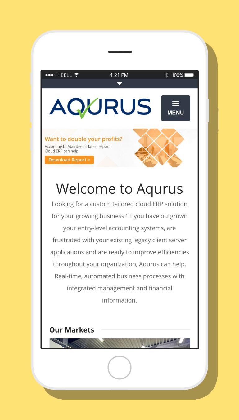 Aqurus Solutions Website #2