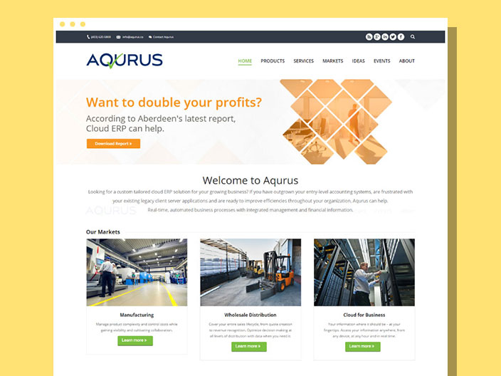Aqurus Solultions Website
