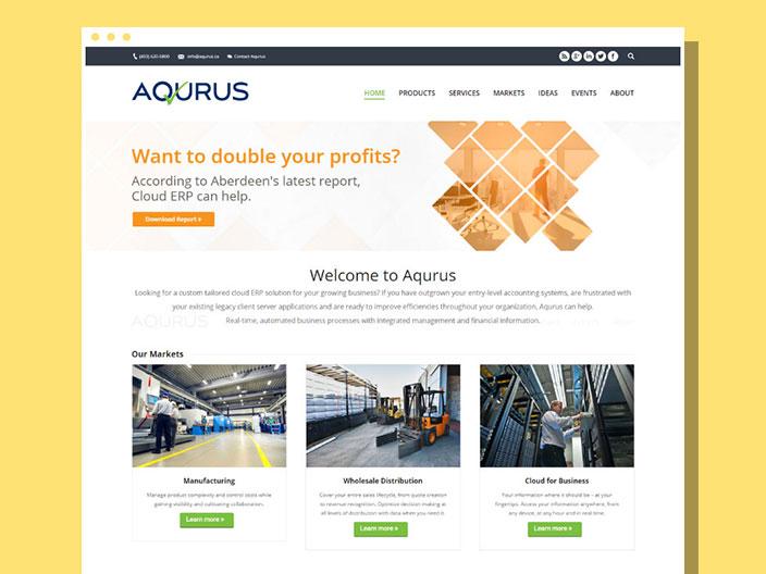 Aqurus Solultions Website