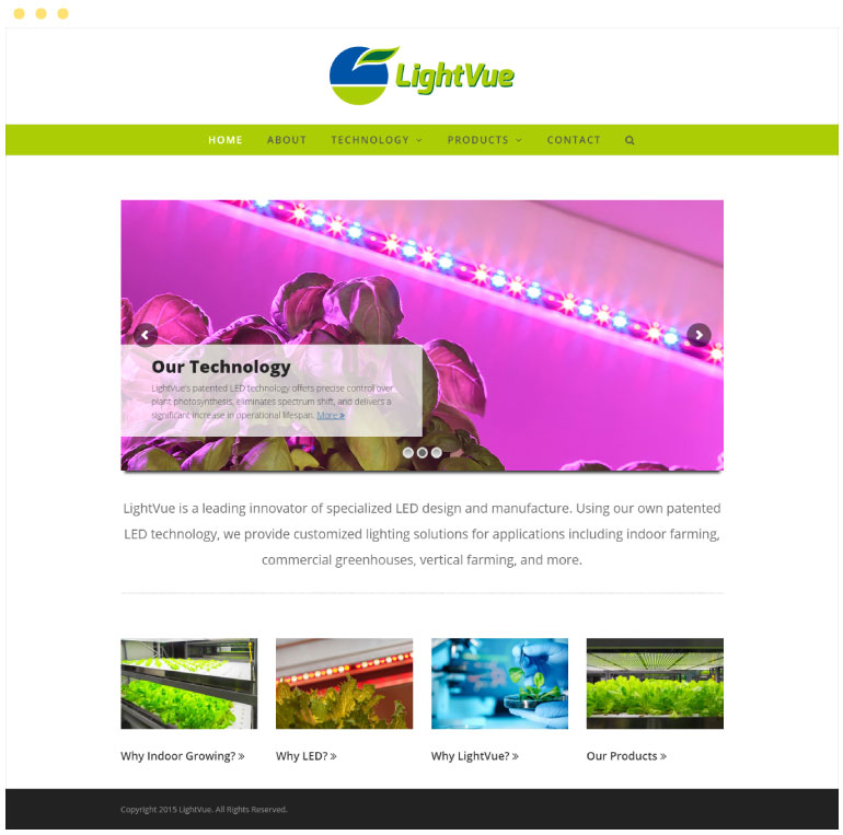 LightVue Website #1