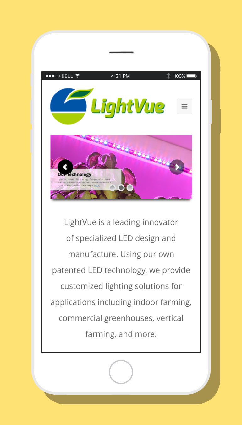 LightVue Website #2