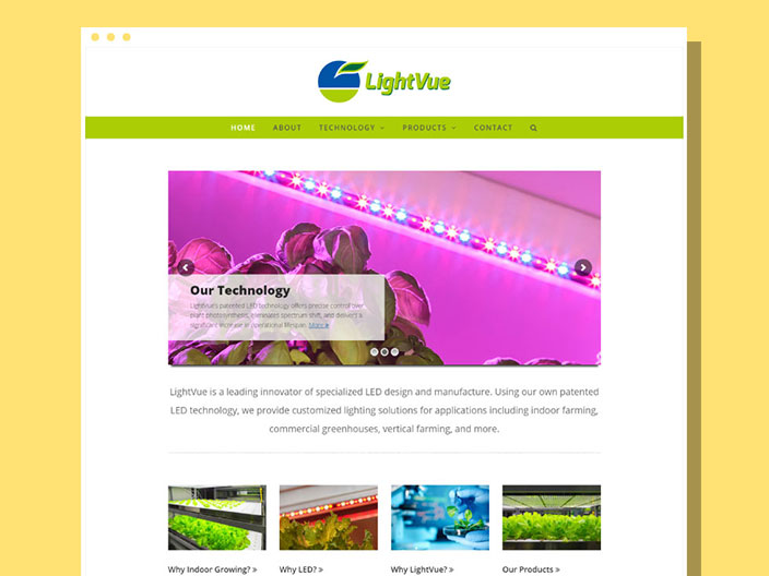 LightVue Website